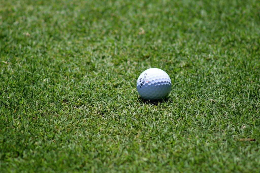 Vue sur une balle de golf sur un green.