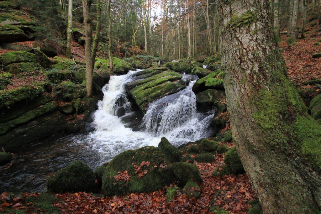 petit cascade au milieu des bois en Auvergne