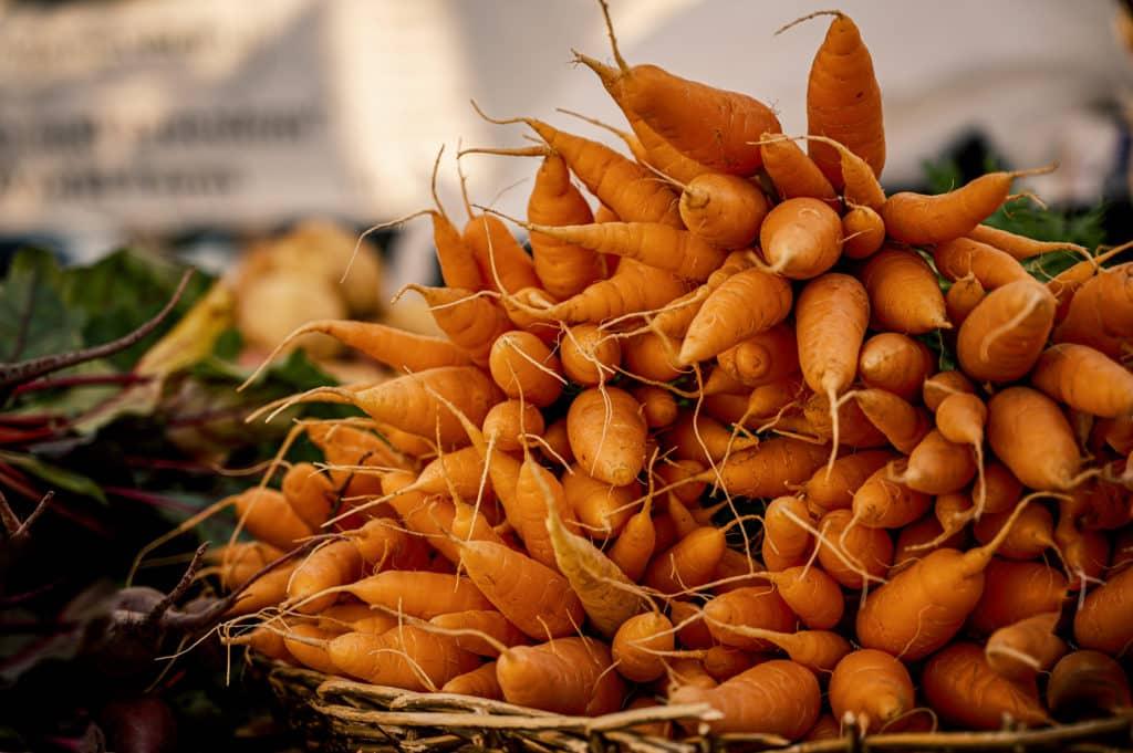 Panier de carotte a préparer en carotte de vichy.
