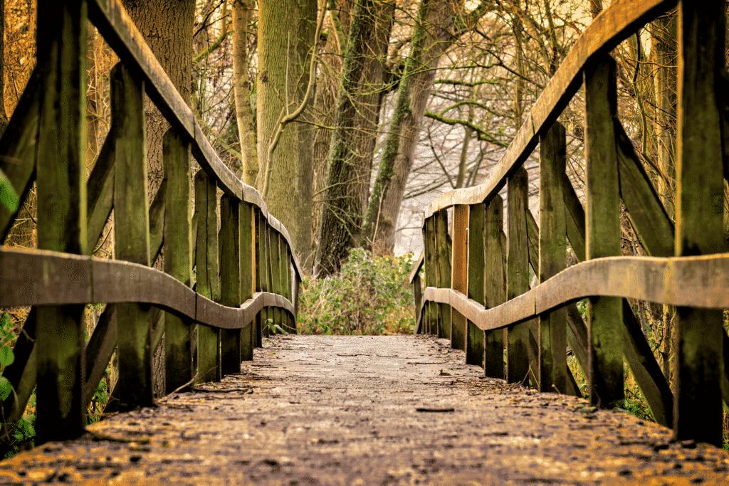 chemin de randonnée avec la vue sur un pont en bois.