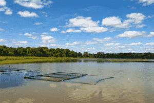 Vue sur un étang dans l'Ain.